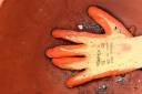 18th September 2011 - Glove